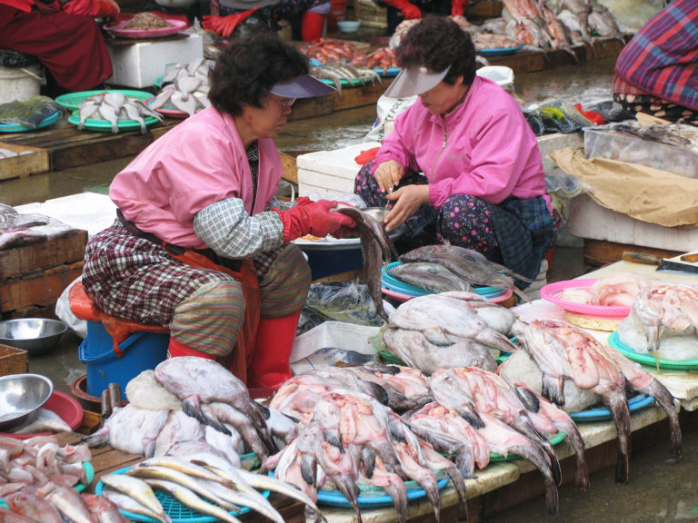 Article image for Food matters: A comparative analysis of fish, income and food supply