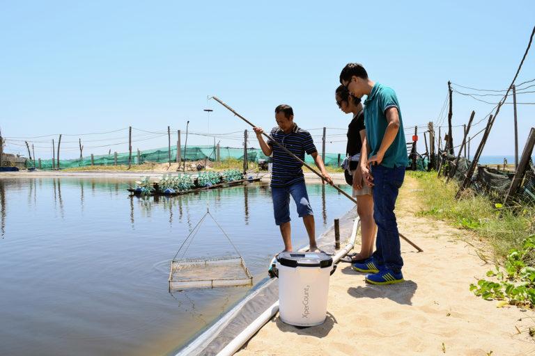 Article image for Un pez, dos peces: la tecnología de conteo genera fondos para la firma de ingeniería canadiense