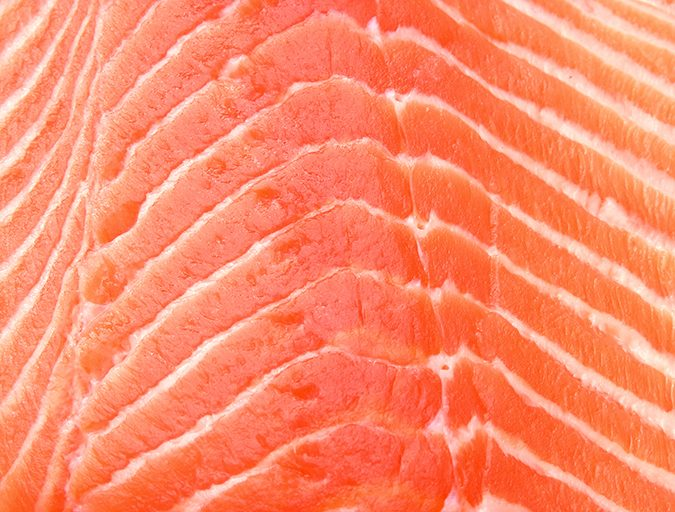 Article image for Wanted: More omega-3s. But from where?