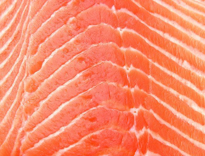 Article image for Se busca: Más omega-3s. Pero ¿de dónde?