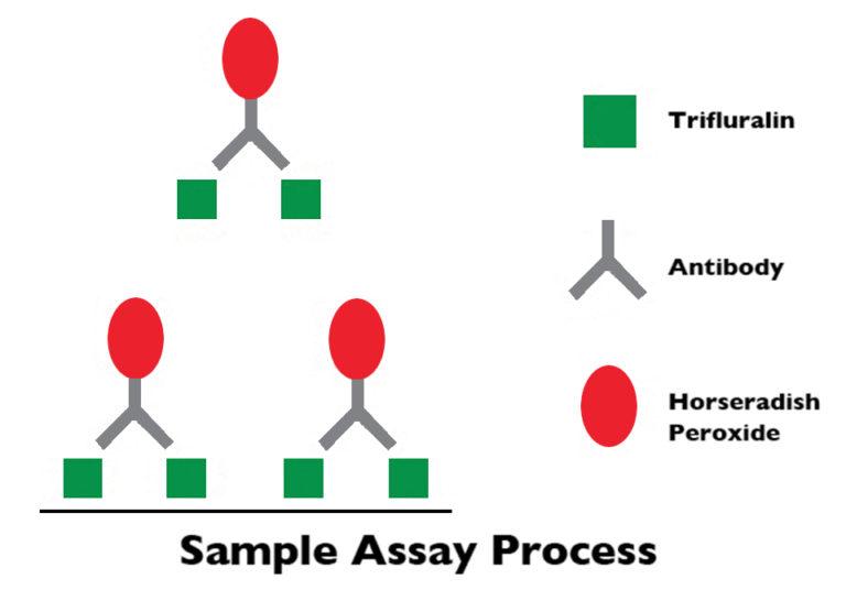 Article image for ELISA kits offer quantitative analysis of trifluralin in fish