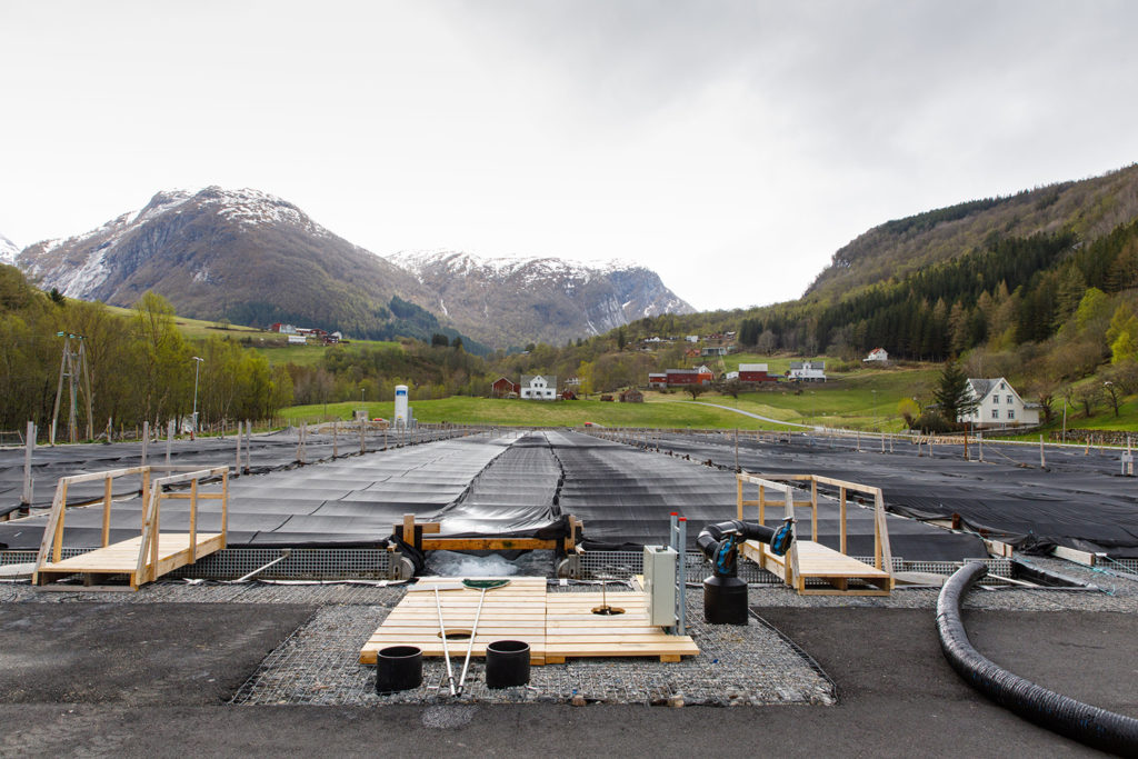 Article image for Norway showcases halibut farm as sustainability star