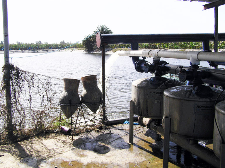 Article image for Water use at integrated aquaculture-agriculture farms