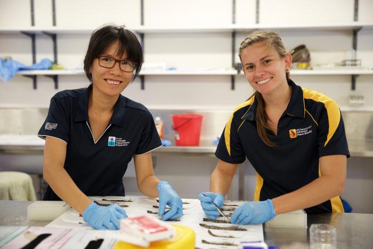 Article image for La prueba de PCR de muestras de un solo tejido puede dar lugar a datos erróneos