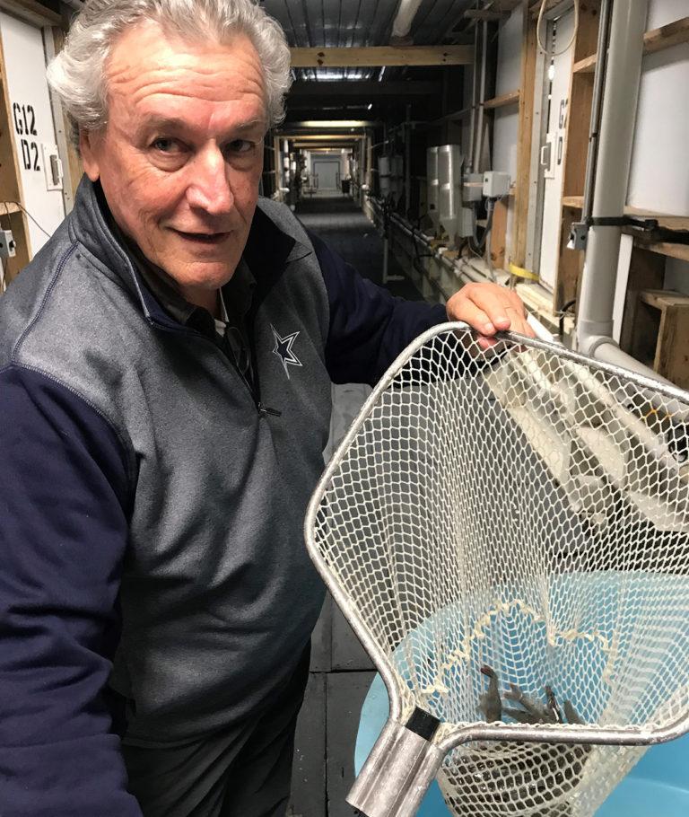 Article image for Productor de Texas está dando una carga a la producción de camarón en RAS