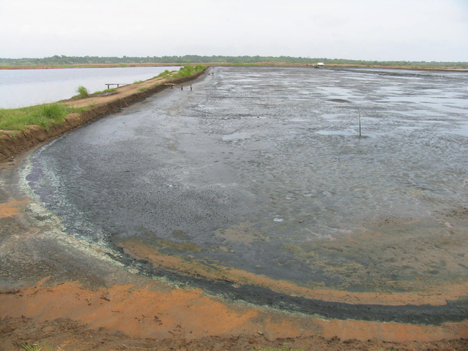 preparación del estanque
