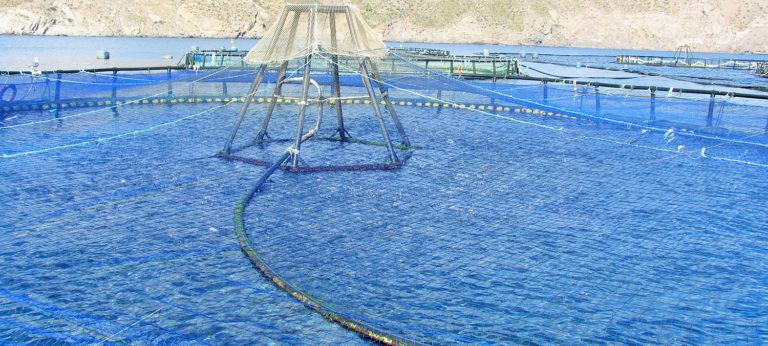 acuacultura marina