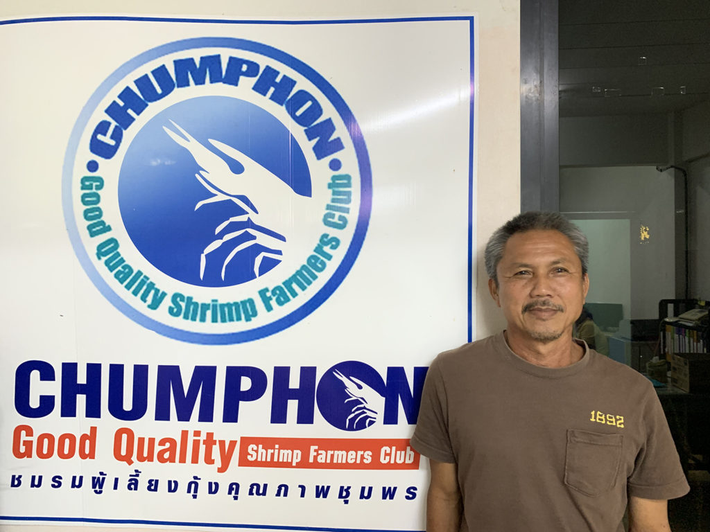 Article image for Early-warning pilot project in Thailand aims to reduce risk of shrimp disease