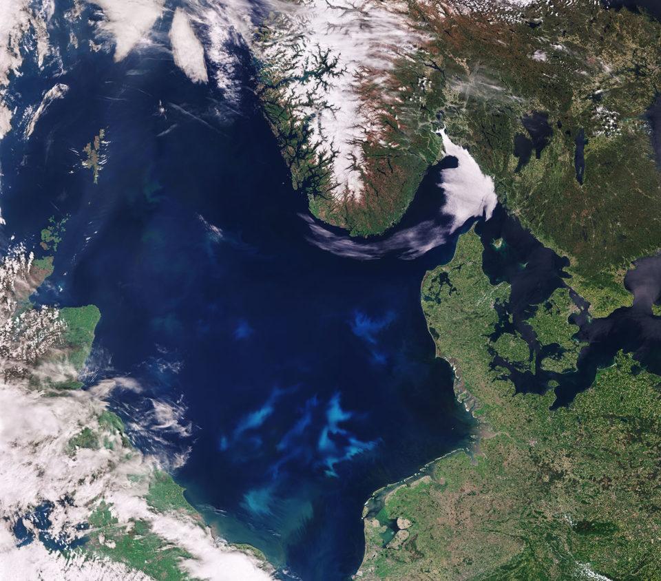 floración de algas nocivas