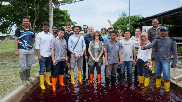 Article image for Little fish in a big pond: Minnowtech aims to give fresh vision to shrimp inventory