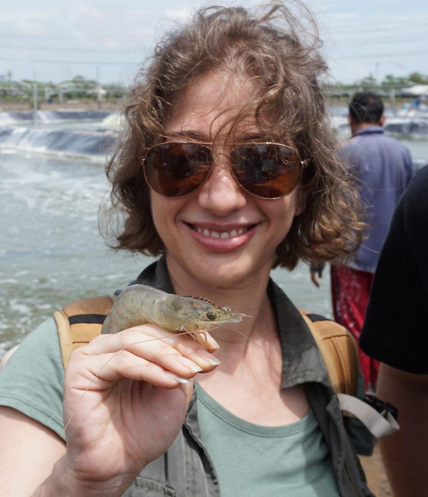 Article image for Pez pequeño en un estanque grande: Minnowtech apunta a dar una visión fresca al inventario de camarones