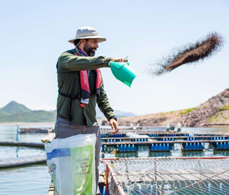 Farmed Seafood: Fact vs. Fiction