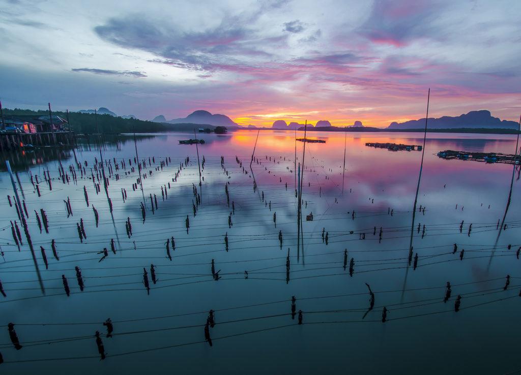 Article image for Cómo la acuacultura promueve la Iniciativa de Crecimiento Azul