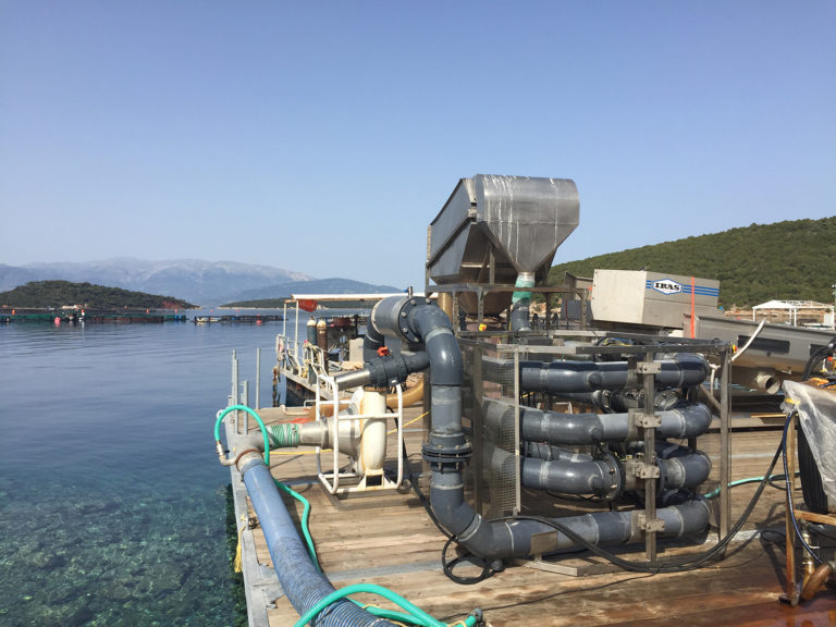 Article image for Global Aquaculture Innovation Award 2019 finalist: Ace Aquatec