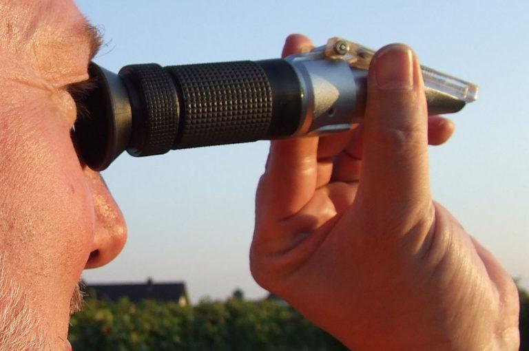 Article image for Salinidad en la acuacultura, Parte 2