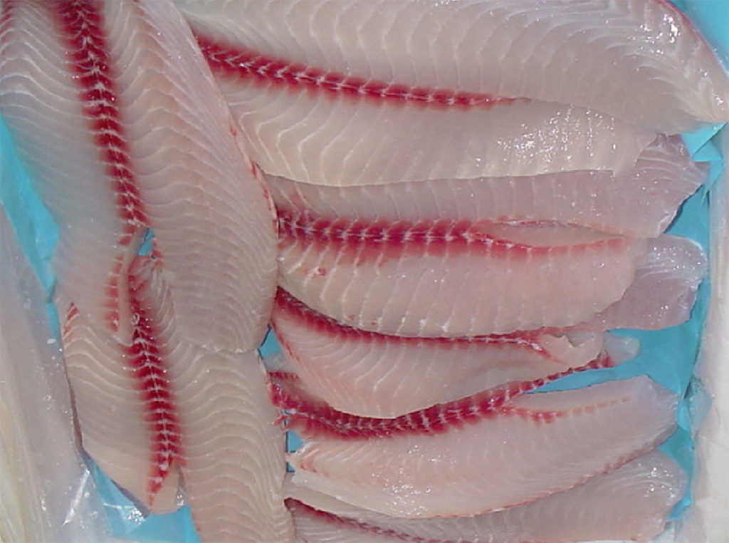 Article image for Effect of pre-slaughter stress on quality of tilapia fillets