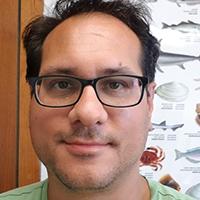 Nicholas Romano, Ph.D.