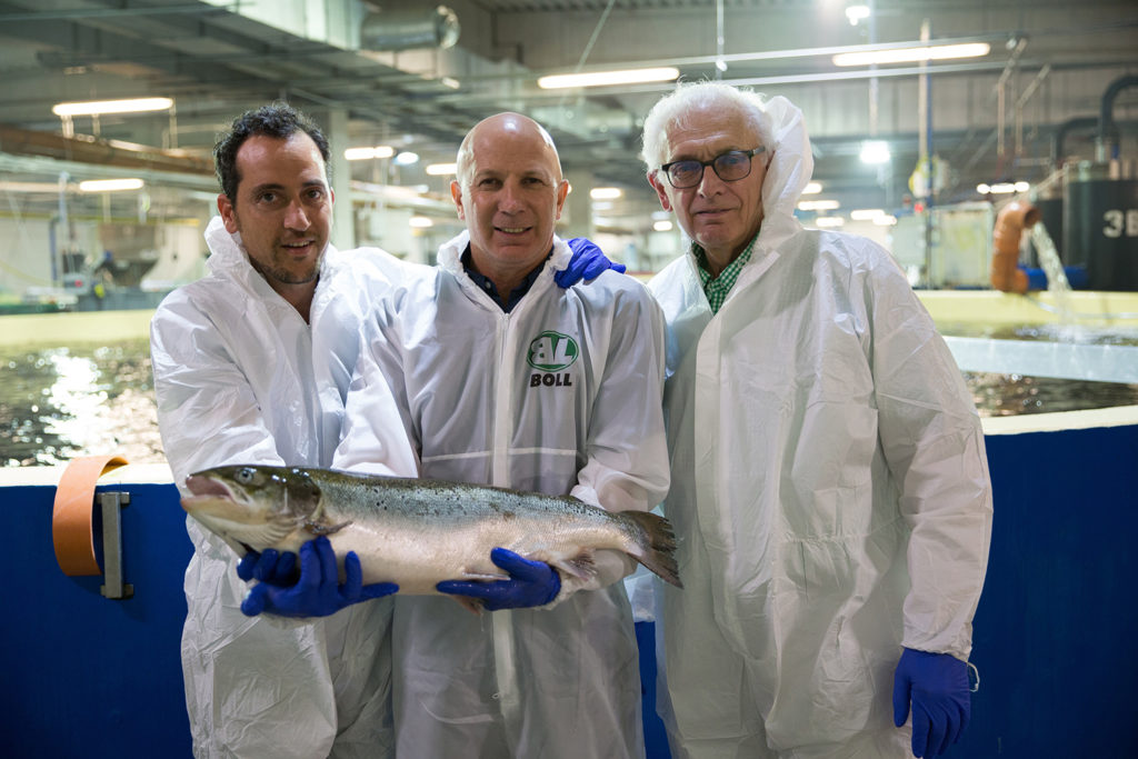 Article image for AquaMaof cultivating a 'new generation' of fish farmers