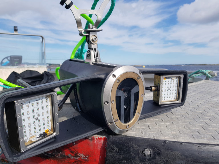 Article image for Farmers deploy new high-tech tools against sea lice