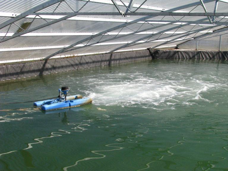 Article image for Uso de energía en la aireación de estanques acuícolas, Parte 1
