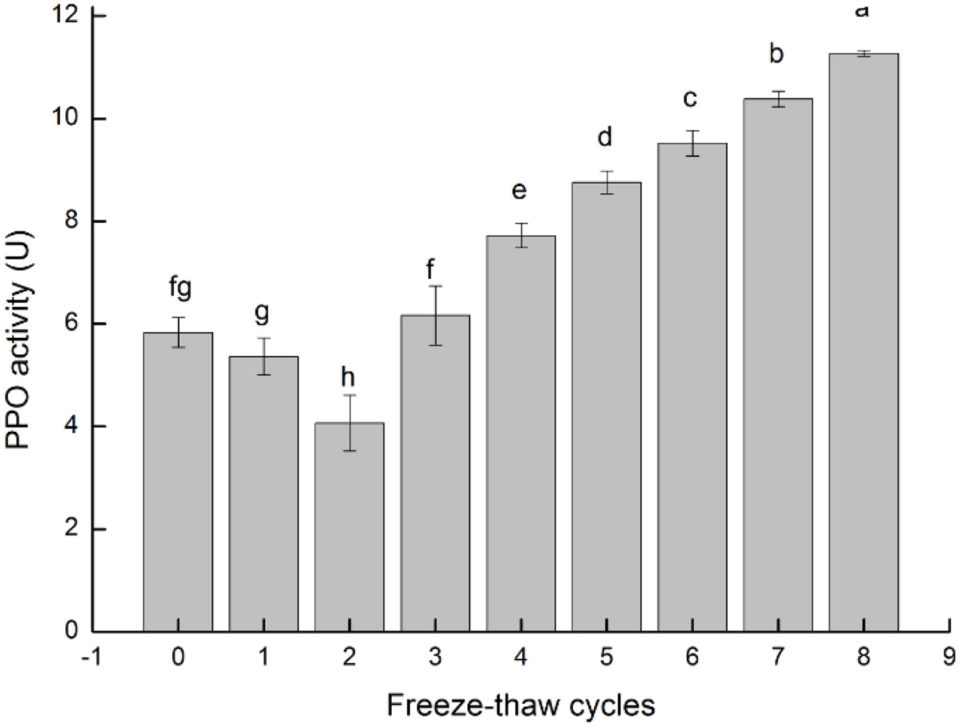 freeze-thaw cycles
