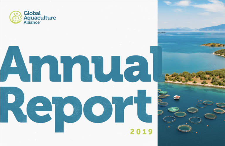 Featured image for GAA Publishes Its 2019 Annual Report