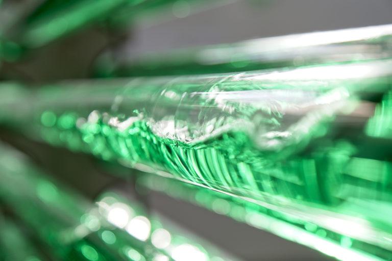 Article image for Producir algas puede ser costoso. Las innovaciones apuntan a reducir los costos.