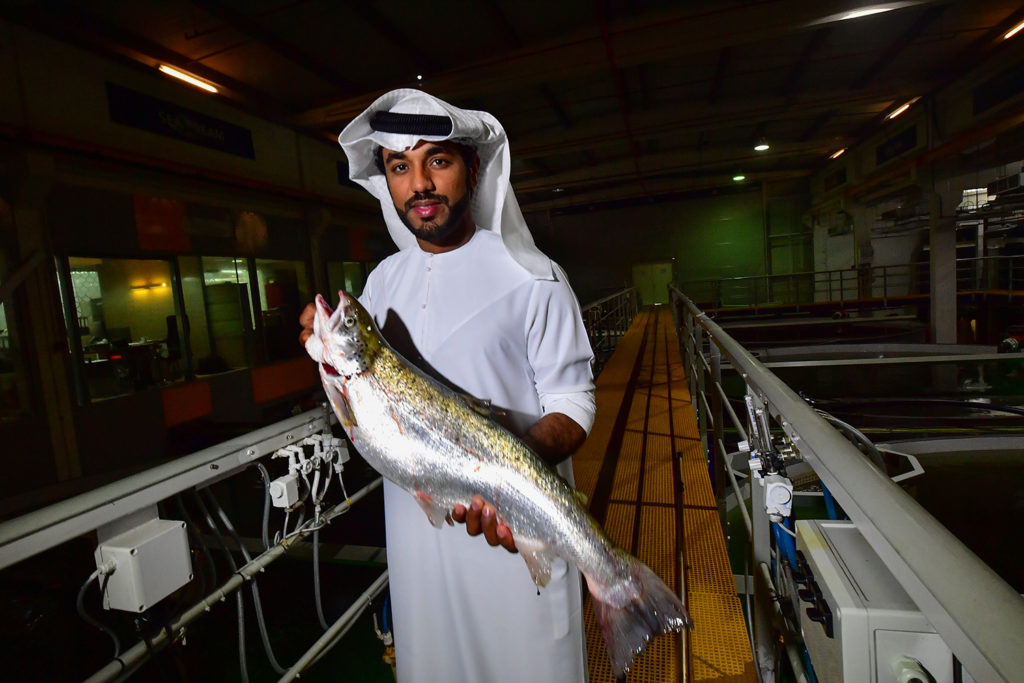 Article image for A salmon farm in Dubai, because of course