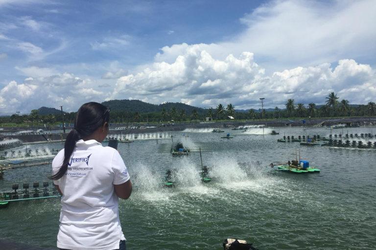 Article image for La tecnología permite a la acuacultura hacer distanciamiento social