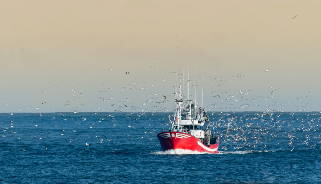 Article image for GAA Congratulates GSA, Seafish on Release of Responsible Fishing Vessel Standard