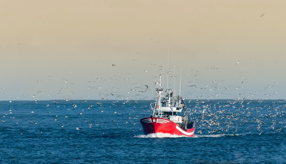 GAA Congratulates GSA, Seafish on Release of Responsible Fishing Vessel Standard