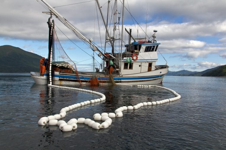 Steaming Ahead with the Responsible Fishing Vessel Standard