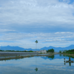 Effects of weather and climate on aquaculture