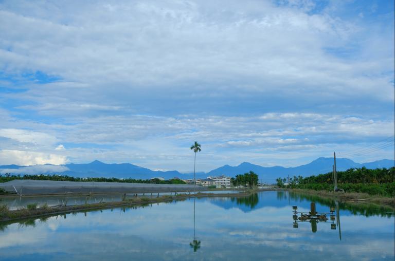 Article image for Efectos del tiempo y el clima en la acuacultura