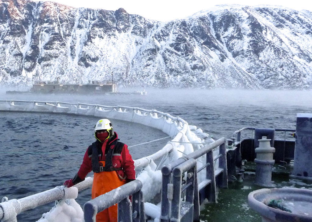 Article image for Can underwater forecasting promise loss prevention for fish farmers?