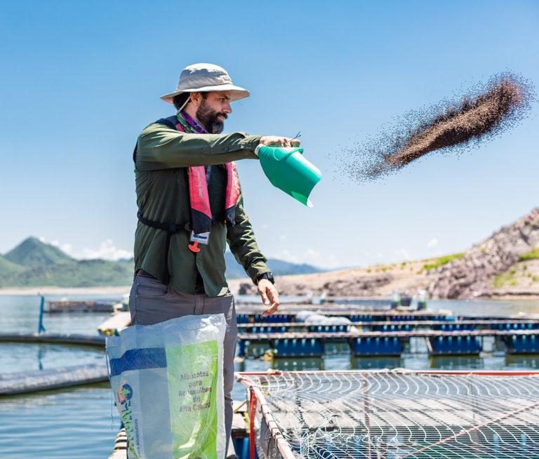 Article image for La soya ayudó a convertir la acuacultura en una fuerza global. ¿Hasta dónde la puede llevar?