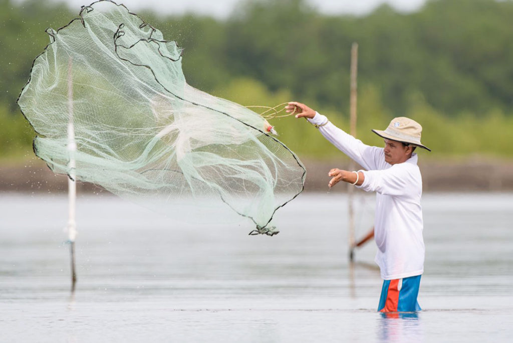Article image for Aquaculture, feed companies embark on a carbon-cutting journey