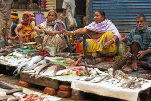 For global nutrition needs, aquatic foods remain overlooked