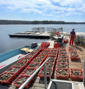 BlueTrace wins $500K NOAA grant for traceability and marketing system