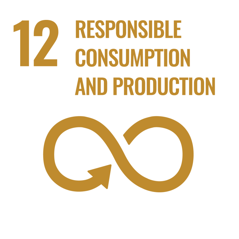 Infographic of SDG 12 Responsible Consumption and Production