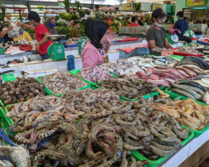 The tie that binds: Aquatic foods tied to successful nutrition policies