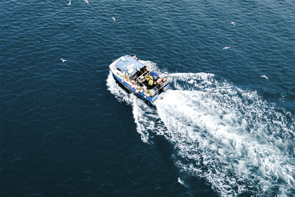 Article image for Environmental groups urge UK fleet to achieve 'climate smart' fisheries