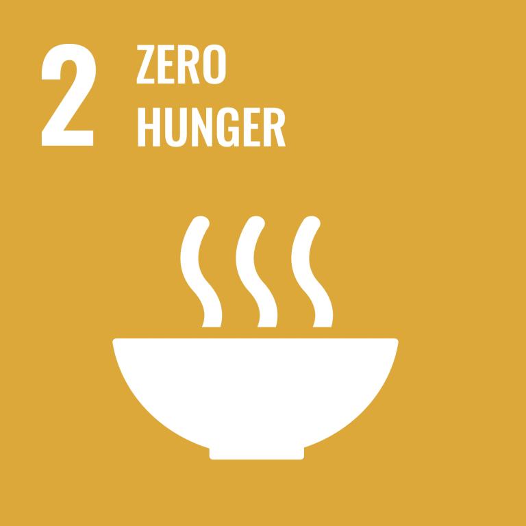 Infographic of SDG 2 - Zero Hunger