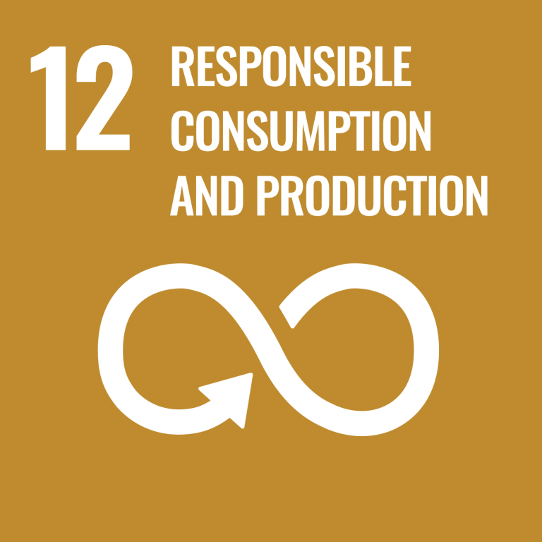 Infographic of SDG 12 - Responsible Consumption and Production