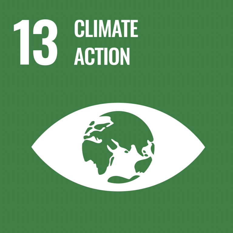 Infographic of SDG 13 - Climate Action
