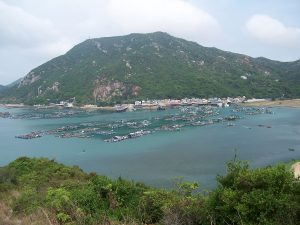 Effects of aquaculture on China's marine fisheries over the past 30 years