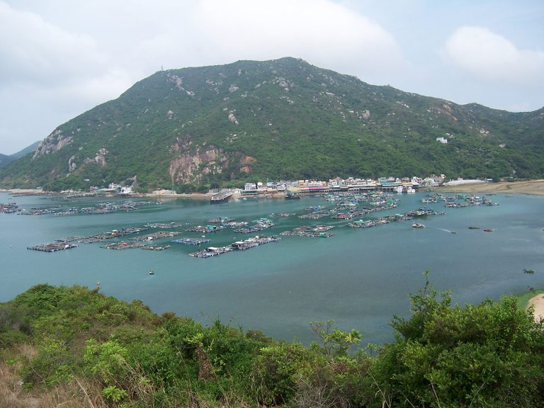 Article image for Effects of aquaculture on China's marine fisheries over the past 30 years