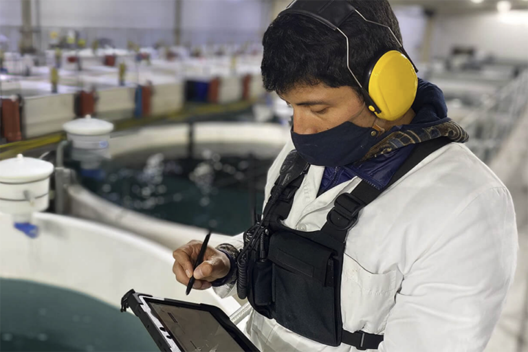 Article image for Ecto raises $7m investment to develop 'game changer' data platform for aquaculture