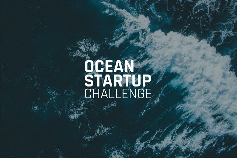 Article image for Project awards $1.1 million to 40 ocean tech startups, including aquaculture